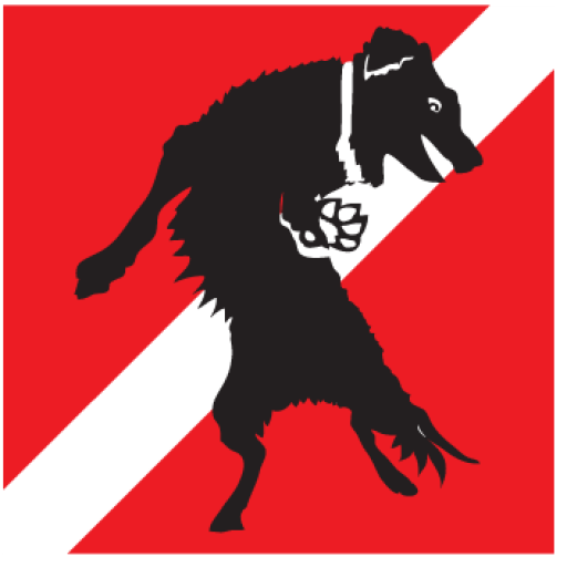 cropped-divedoggie-logo-horiz.png