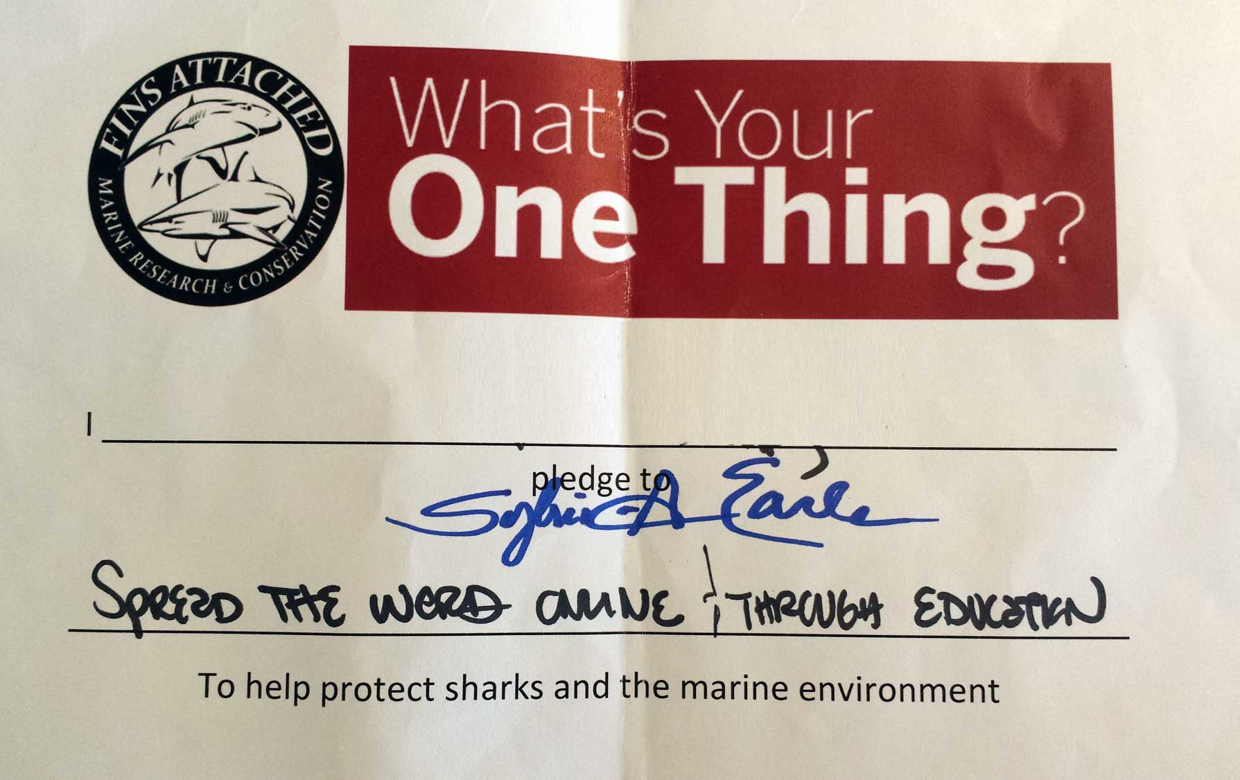 One Thing with Sylvia Earle