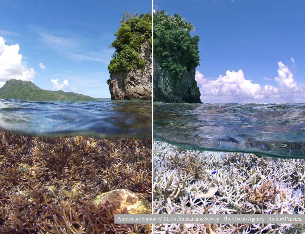 American Samoa XL Catlin Seaview Survery - The Ocean Agency - Richard Vevers