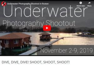 dive-dive-dive-shoot-shoot-shoot