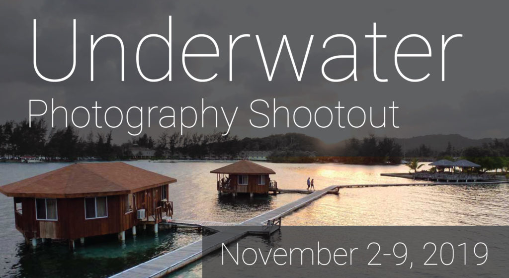 Underwater Photography Shootout