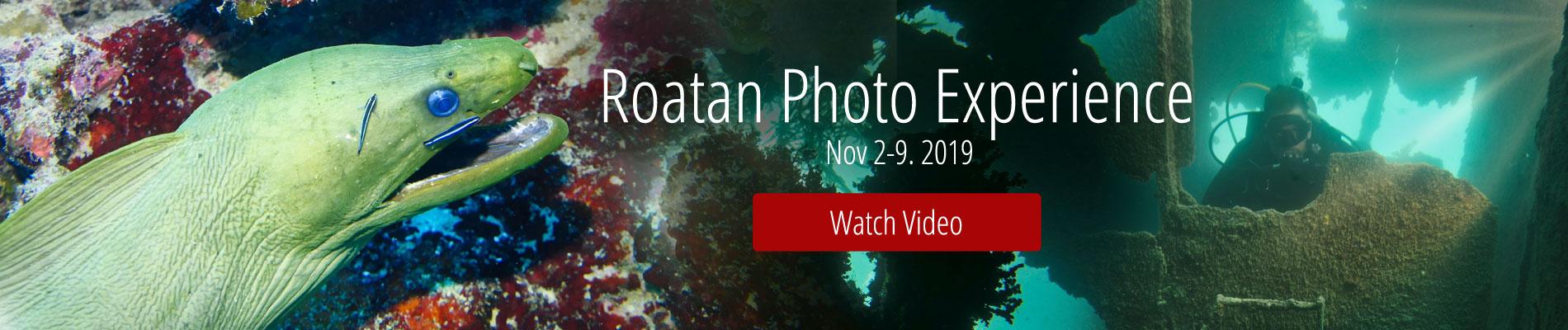 Roatan Photo Experience Watch Video