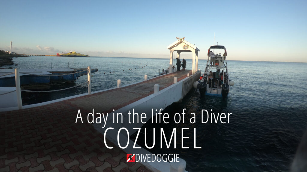 day-in-the-life-cozumel
