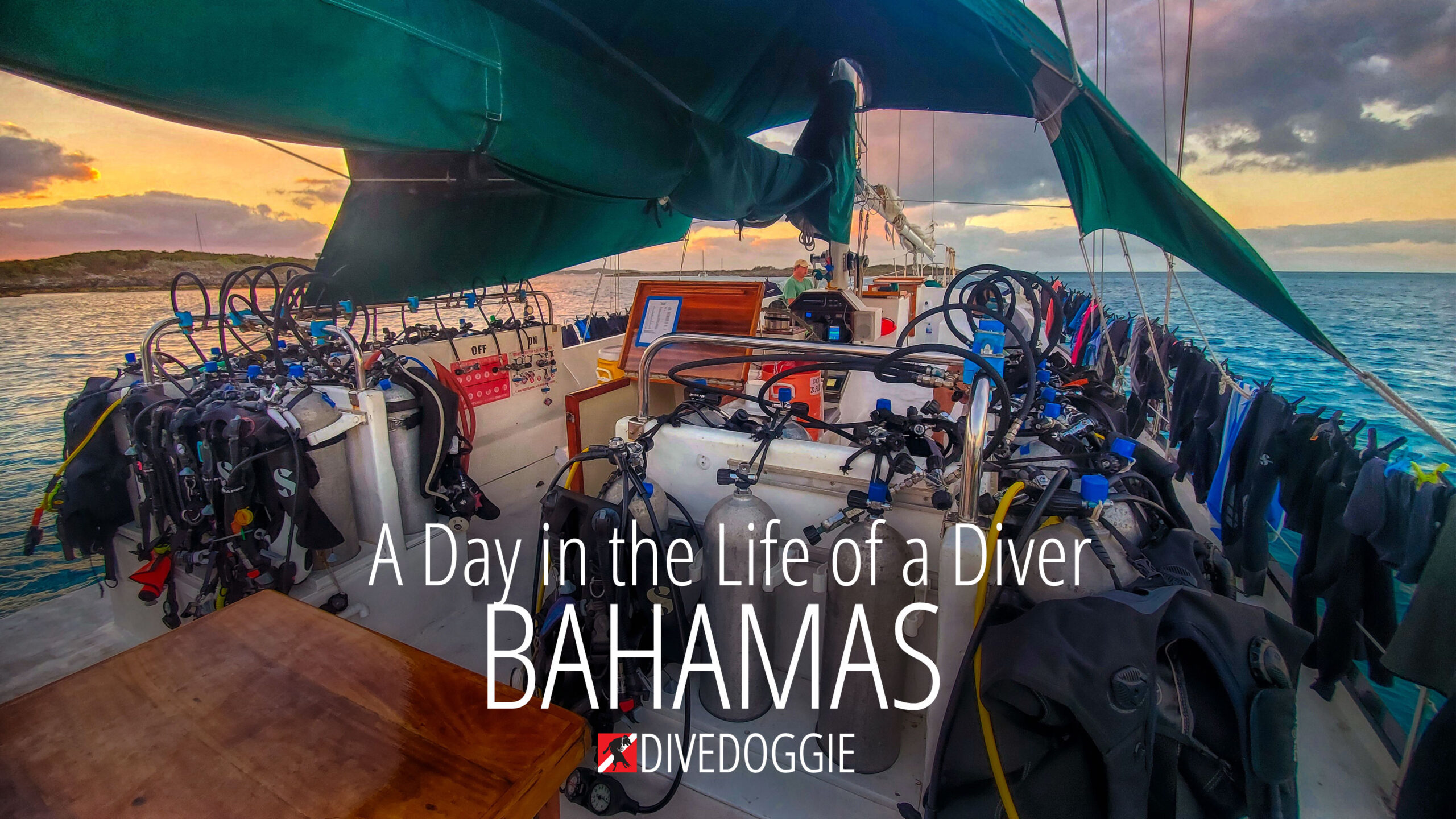 Day in the life of a diver Bahamas